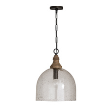 Capital 336011YP-484 - 1 Light Pendant